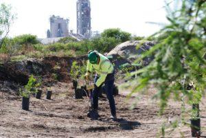 Holcim Argentina presentó los resultados  de su Gestión Ambiental