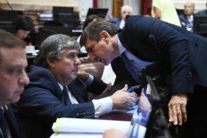 Naidenoff con mensaje al kirchnerismo: «La Argentina es adicta al relato»