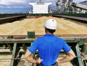 Los agroexportadores liquidaron en abril US$ 1.500 millones con caída interanual del 20%