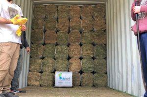 Alfalfa recompactada, una innovación cordobesa que ya se exporta