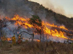 Con el viento que no da tregua, siguen en actividad tres incendios de grandes dimensiones