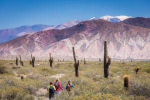 Turismo: Salta es la primera provincia que recibe el certificado internacional de destino seguro